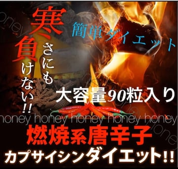 燃焼●大容量3ヶ月分●汗かきダイエット●高麗人参+カプサイシン