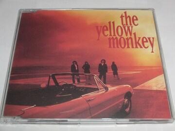 THE YELLOW MONKEY/聖なる海とサンシャイン [Maxi]