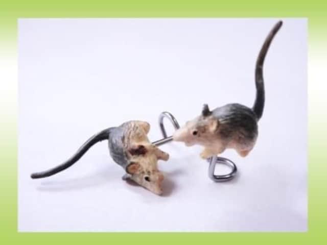 【ボディーピアス】スクリューマウス【即決アリ】  < 男性アクセサリー/時計の