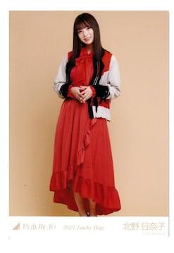 乃木坂46 北野日奈子 全身 ヒキ 生写真 2021年 福袋限定 新品
