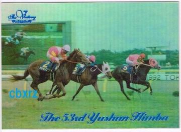 当選ビクトリー99 第53回優駿牝馬 アドラーブル 競馬 cy-04