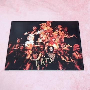 即決劇団四季 CAT1986年のパンフレット 菊池桃子