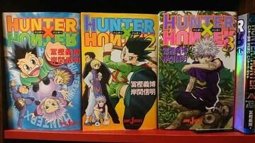 ハンターハンター HUNTER×HUNTER 小説 1-3巻+ハンター協会公式ガイド