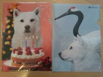 SoftBankソフトバンクお父さんクリアファイル2枚セット/白い犬/新品未使用非売品