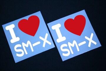 I LOVE ステッカー2枚組み 各色有り SM-X