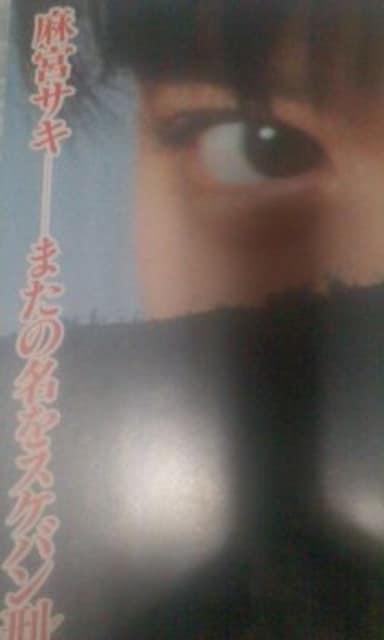 映画パンフレット【スケバン刑事】南野陽子 < タレントグッズの