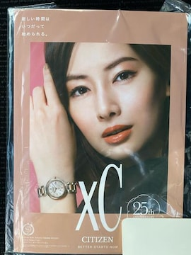 非売品!CITIZEN 北川景子 立てかけ式スタンドポスター☆