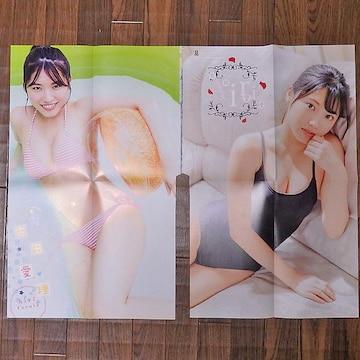 古田愛理 両面BIGポスター2枚 週刊少年チャンピオン