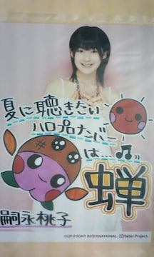 夏に聴きたいハロプロナンバー・2L判1枚 2009.8.7/嗣永桃子