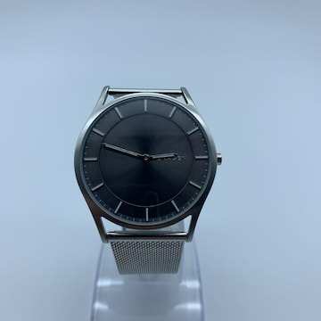 SKAGEN スカーゲン 腕時計 SKW6239 メンズ シルバー 動作