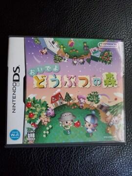 Nintendo DS-おいでよどうぶつの森