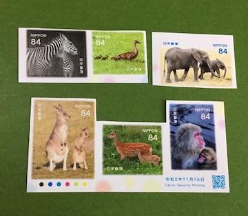2020 動物★84円切手6枚 額面合計504円分★シール式・未使用