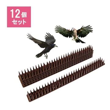 鳥よけ とげシート 12本セット