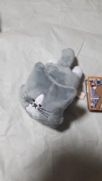 猫のぽんた