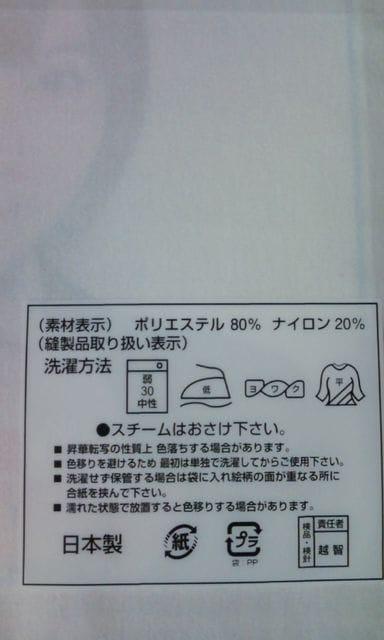 SKE48 春コン 2012 「SKE専用劇場は秋までにできるのか?」ミニタオル 秦 < タレントグッズの