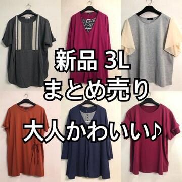 新品☆3L♪まとめ売り♪大人かわいい系6枚☆d749