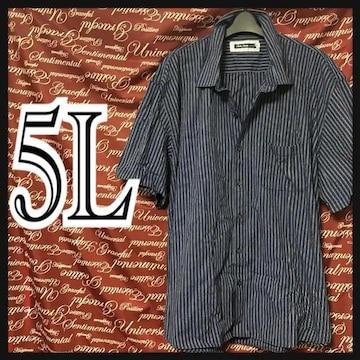 5L・ストライプシャツ新品/MCF806-107