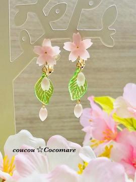 桜満開 春の桜イヤリング