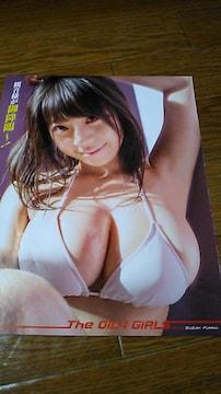 鈴木ふみ奈・グラビア雑誌からの切り抜き〜送料込み