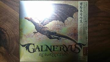 新品 ガルネリウス RESURRECTION 小野正利 SHO Syu