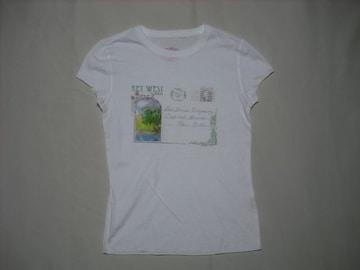 24 女 ラルフローレン ポロジーンズ 白 半袖Tシャツ XS