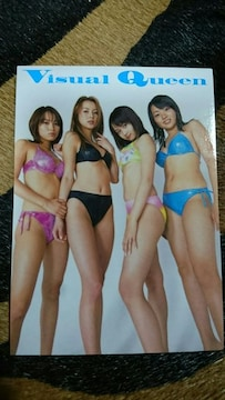 VisualQueen  トレカ 1枚