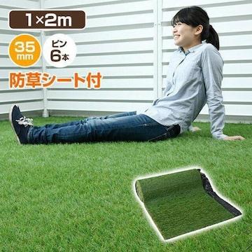 人工芝 ロール 防草シート付き 1m×2m★夏芝・春芝 選択/e
