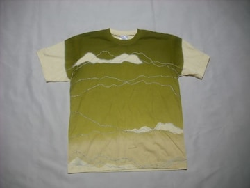 rt607 男 NIKE ナイキ 半袖Tシャツ Mサイズ 刺繍