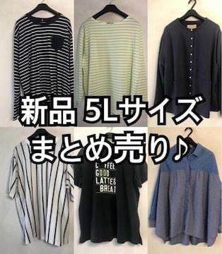 新品☆5L♪まとめ売り♪カジュアル系Tシャツなど☆d685