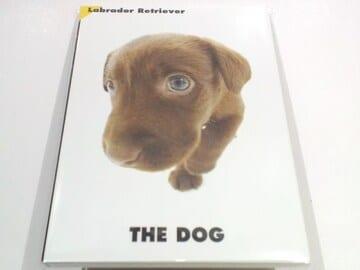 犬送円kgTHEDOGPostCardLABRADORラブラドールレトリバーポストカード冊子Book