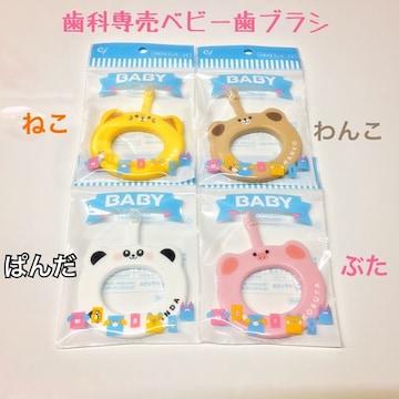 【送料無料】 未開封新品 歯科専売 ベビー歯ブラシ 4本セット