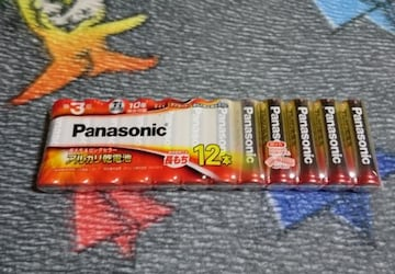 Panasonic アルカリ乾電池 単3形 12本