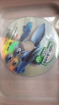 未使用沖縄美ら海水族館DVD