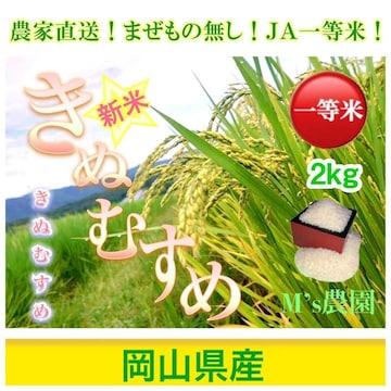 ★新米★ 令和3年産 農家直送 きぬむすめ 2kg
