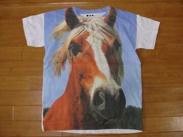アニマル フォト 馬 Tシャツ Mサイズ 新品