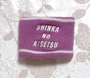 松浦亜弥 shinka no kisetsu リストバンド