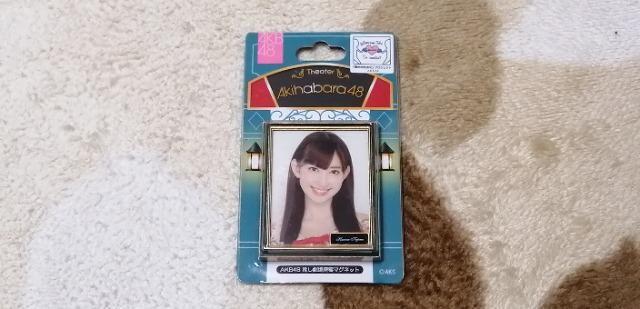 元AKB48小嶋陽菜☆AKB48推し劇場壁写マグネット!  < タレントグッズの