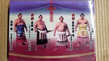 *大相撲人気力士バスタオル*23