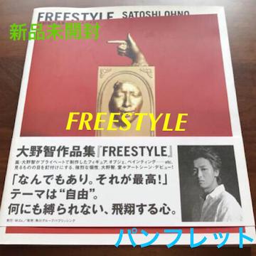新品未開封☆嵐 大野智 FREESTYLE★パンフレット