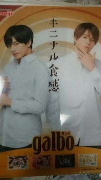 明治 ガルボ  Sexy Zone 中島健人 菊池風磨 クリアファイル