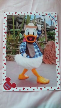 オマケ写真つき☆TDL2013スペシャルフォトドナルドウエスタンスペフォ