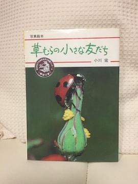 852.写真絵本☆虫
