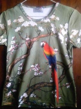 和柄 花鳥風月 鳥と桜 新品未使用