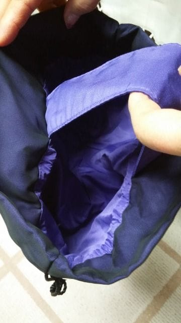 ANNA SUI 巾着ポーチ(バッグ?) 未使用 < ブランドの