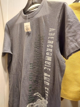 Abercrombie&Fitch Tシャツ size S訳あり