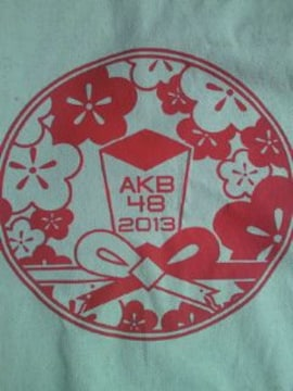 AKB48 2013 公式 福袋 トートバッグ 布製 BAG カバン 鞄 かばん