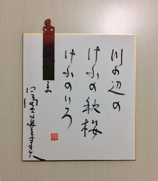 『冨士眞奈美』サイン色紙!