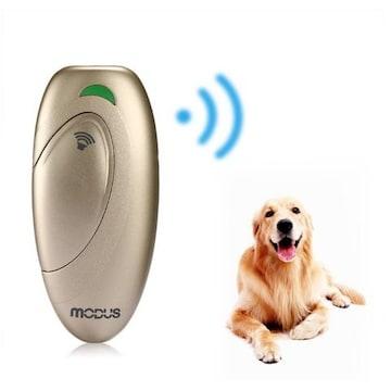 愛犬しつけ 犬の訓練用 超音波式 無駄吠え(S, ゴールド)
