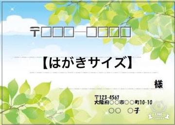 ★ナ)はがきサイズ★宛名シール★新緑�C→8枚