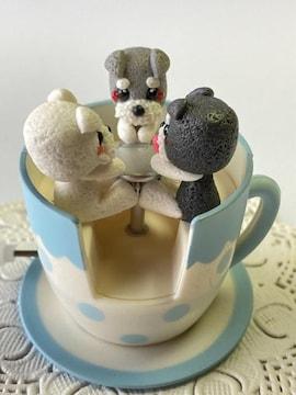コーヒーカップに乗ったシュナウザーちゃん